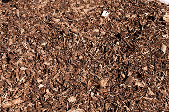 Groundshield Bark High quality Garden Bark Woodchip and Mulch